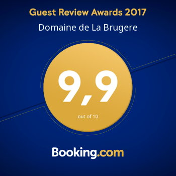 guest review booking